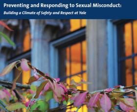 Preventing and Responding to Sexual Misconduct PDF cover links to downloadable PDF of the guide.